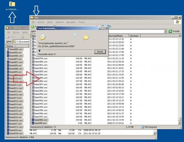 Rysunek 23. Kopiowanie baz wirusów doutworzonego folderu.