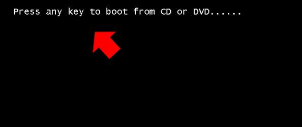 Rysunek 1.  Start instalatora systemu zpłyty DVD.
