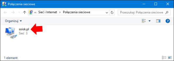 Widok zainstalowanych kart sieciowych wsystemie Windows 10.